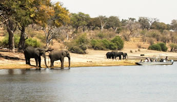 Victoria Falls and Kruger National Park Tour